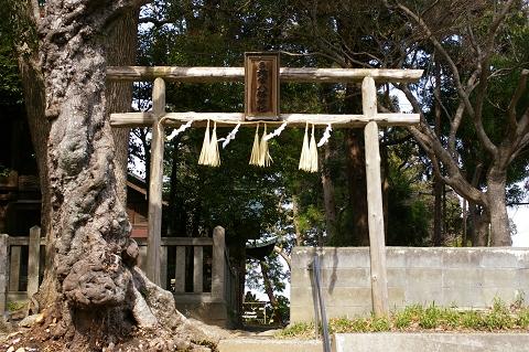 椎宮八幡神社裏参道鳥居