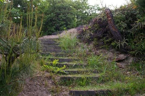 奥の宮への石段
