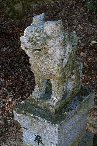 狛犬2 吽