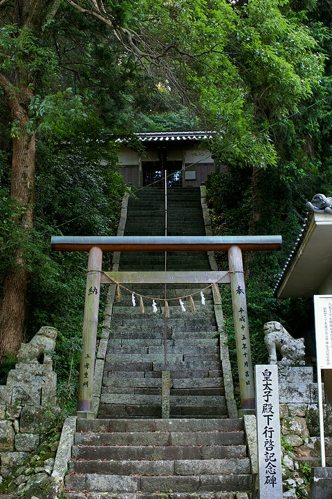 拝殿へ続く石段と鳥居