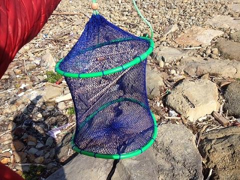 フラシ魚篭