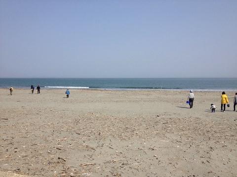 春らしい小松海岸