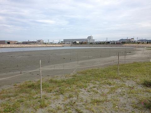 沖洲人工海浜