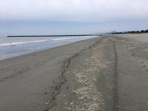 荒れの後の小松海岸