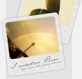 I solation Room